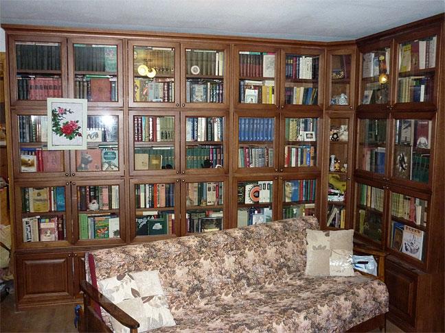 Шкаф библиотека фото.